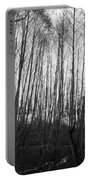 Black And White Birch Stand Portable Battery Charger