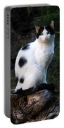 Black And White Cat On Tree Stump Portable Battery Charger