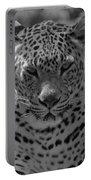 Black And White Leopard Portrait  Portable Battery Charger