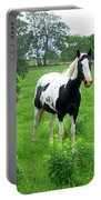 Black And White Paint Horse Portable Battery Charger