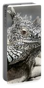 Black And White Saurian Animal Nature Iguana Portable Battery Charger