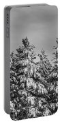 Black And White Snow Covered Trees Portable Battery Charger
