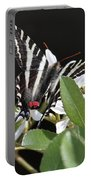 Black And White Swallowtail Square Portable Battery Charger