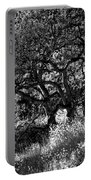 Black And White Trees Portable Battery Charger