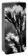 Black And White Vegetation In The Dunes Portable Battery Charger