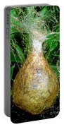 Black And Yellow Garden Spider Egg Sac Portable Battery Charger