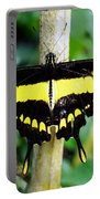 Black And Yellow Swallowtail Butterfly Portable Battery Charger