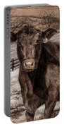 Black Angus In The Field Portable Battery Charger
