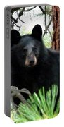 Black Bear 1 Portable Battery Charger