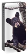 Black Bear Cub Up In A Dead Tree In Northern Minnesota Portable Battery Charger