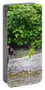 Black Bear Eating A Salmon In Fish Creek In Tongass National Forest-ak Portable Battery Charger