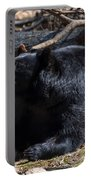 Black Bear Guarding Food Portable Battery Charger