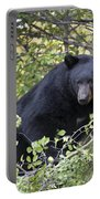 Black Bear II Portable Battery Charger