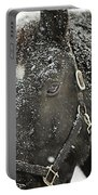 Black Beauty In A Blizzard Portable Battery Charger