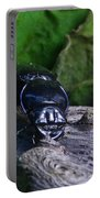 Black Beetle Portable Battery Charger