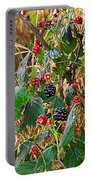 Black Berry Portable Battery Charger