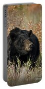 Black Bruin Portable Battery Charger