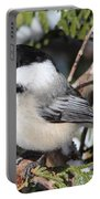 Black-capped Chickadee 9527 Portable Battery Charger