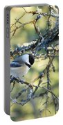 Black Capped Chickadee Portable Battery Charger