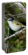 Black-capped Vireo Portable Battery Charger