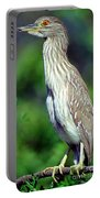 Black-crowned Night Heron Juvenile Portable Battery Charger