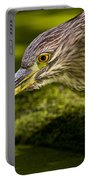 Black Crowned Night Heron Pictures 115 Portable Battery Charger