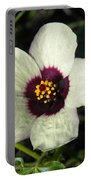 Black Eye Susan In The Prairie Portable Battery Charger