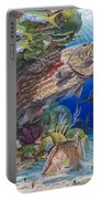 Black Grouper Hole Portable Battery Charger by Carey Chen