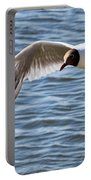 Black-headed Gull Portable Battery Charger