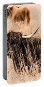 Black Highland Cow Portable Battery Charger