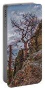Black Hills Boulders Portable Battery Charger