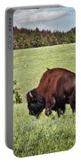 Black Hills Bull Bison Portable Battery Charger by Robert Frederick