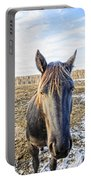 Black Horse Portable Battery Charger