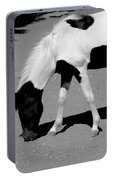 Black N White Horse Portable Battery Charger