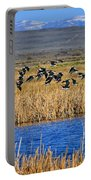 Black-necked Stilts In Flight Portable Battery Charger