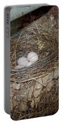 Black Phoebe Nest With Eggs Portable Battery Charger