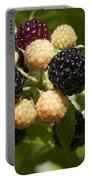 Black Raspberries Portable Battery Charger