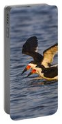 Black Skimmers Portable Battery Charger