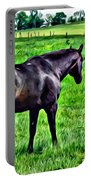 Black Stallion In Pasture Portable Battery Charger