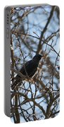 Black  Starling Portable Battery Charger