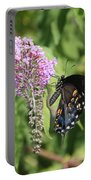 Black Swallowtail Portable Battery Charger