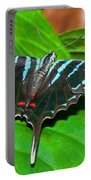 Black Swordtail Butterfly Portable Battery Charger