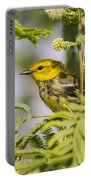 Black-throated Gren Warbler Portable Battery Charger