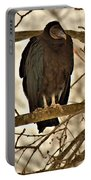 Black Vulture 1 Portable Battery Charger