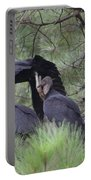Black Vultures II Portable Battery Charger