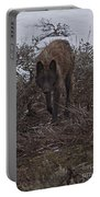 Black Wolf   #1678 Portable Battery Charger