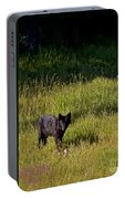Black Wolf   7251 Portable Battery Charger