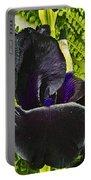 Blackbeard Portable Battery Charger