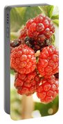 Blackberries Ripening Portable Battery Charger