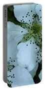 Blackberry Blossoms Portable Battery Charger
